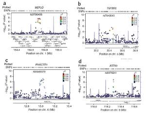 Regional plots for newly identified variants associated with migraine. Each regional plots shows the chromosomal position of SNPs in the specific region.