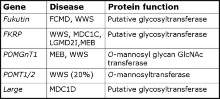 List of glycosyltransferases with associated deseases and functions.