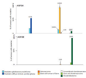 Prevalence and distribution of histone H3.3 somatic alterations in different tumor types. The percentage of cases in each series harboring a specific histone H3.3 alteration is indicated