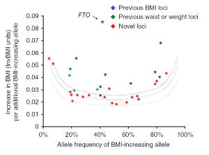 Plot of effect size versus effect-allele frequency of newly identified and previously identified body mass index variants after stage 1 and stage 2 analysis, including the 10 previously identified BMI loci (blue), the 4 previously identified waist and weight loci (green) and the 18 newly identified BMI loci (blue). The dotted lines represent the minimum effect sizes that could be identified for a given effect-allele frequency with 80% (upper line), 50% (middle line) and 10% (lower line) power.