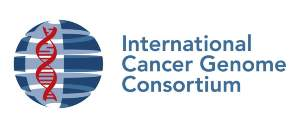 The ICGC plans to decode the  genomes of 25,000 cancer samples to create a resource of freely  available data to help cancer researchers around the world.