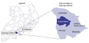 Map of districts within Uganda and sub-counties within Kalungu District where the study was carried out.