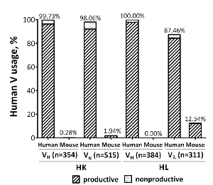 Inactivation of mouse variable region usage by inversion. Human and mouse V-region usage was evaluated in mice with series of IG BAC insertions in HK and HL mice. All the heavy chain transcripts used the human DH and JH segments and all the kappa light chain transcripts used human JK. n is sample numbers.