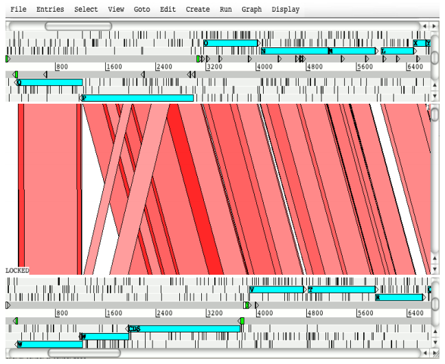 Main ACT window showing a two sequence comparison.