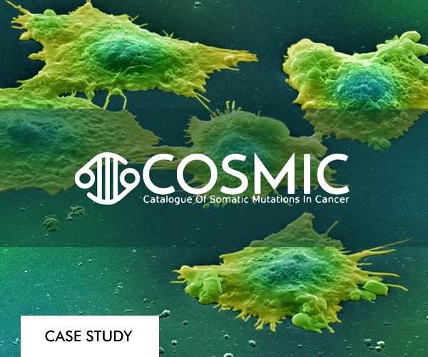 COSMIC case study catalogue of somatic mutations in cancer