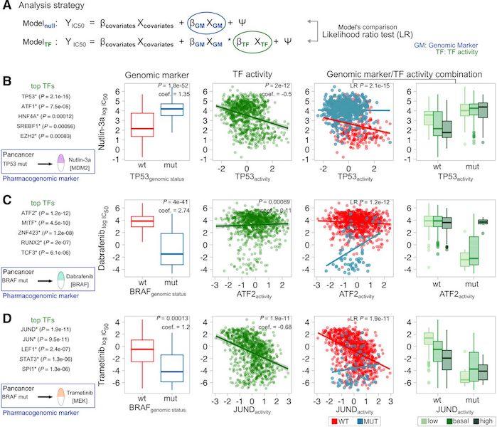 Garcia-Alonso L, <strong>Iorio F</strong>et al. <em>Transcription Factor Activities Enhance Markers of Drug Sensitivity in Cancer</em>. <em><strong>Cancer Res</strong></em>. 2018;78:769–80.