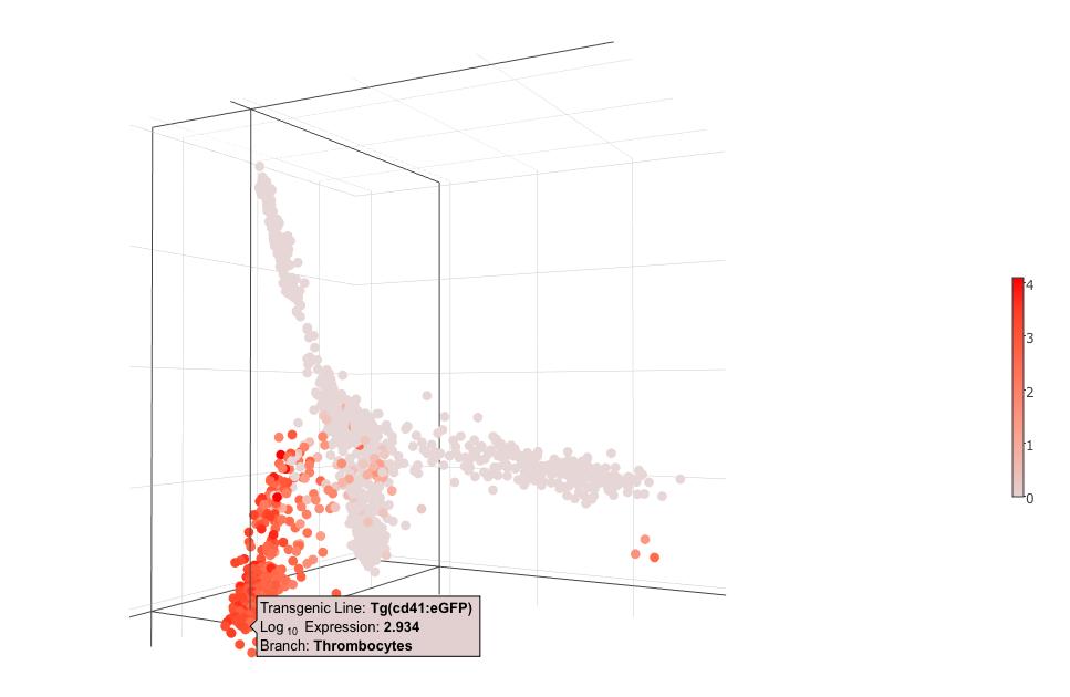 BASiCz: Diffusion Map Trajectory