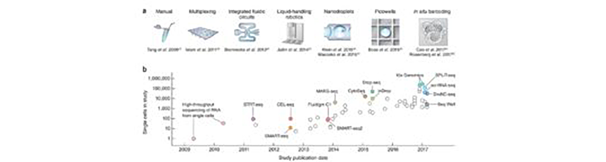 Svensson V, Vento-Tormo R, Teichmann SA. Exponential scaling of single-cell RNA-SEQ in the past decade. <em>Nat Protoc</em>. 2018; <strong>13:</strong> 599-604. doi: 10.1038/nprot.2017.149. Epub 2018 Mar 1.
