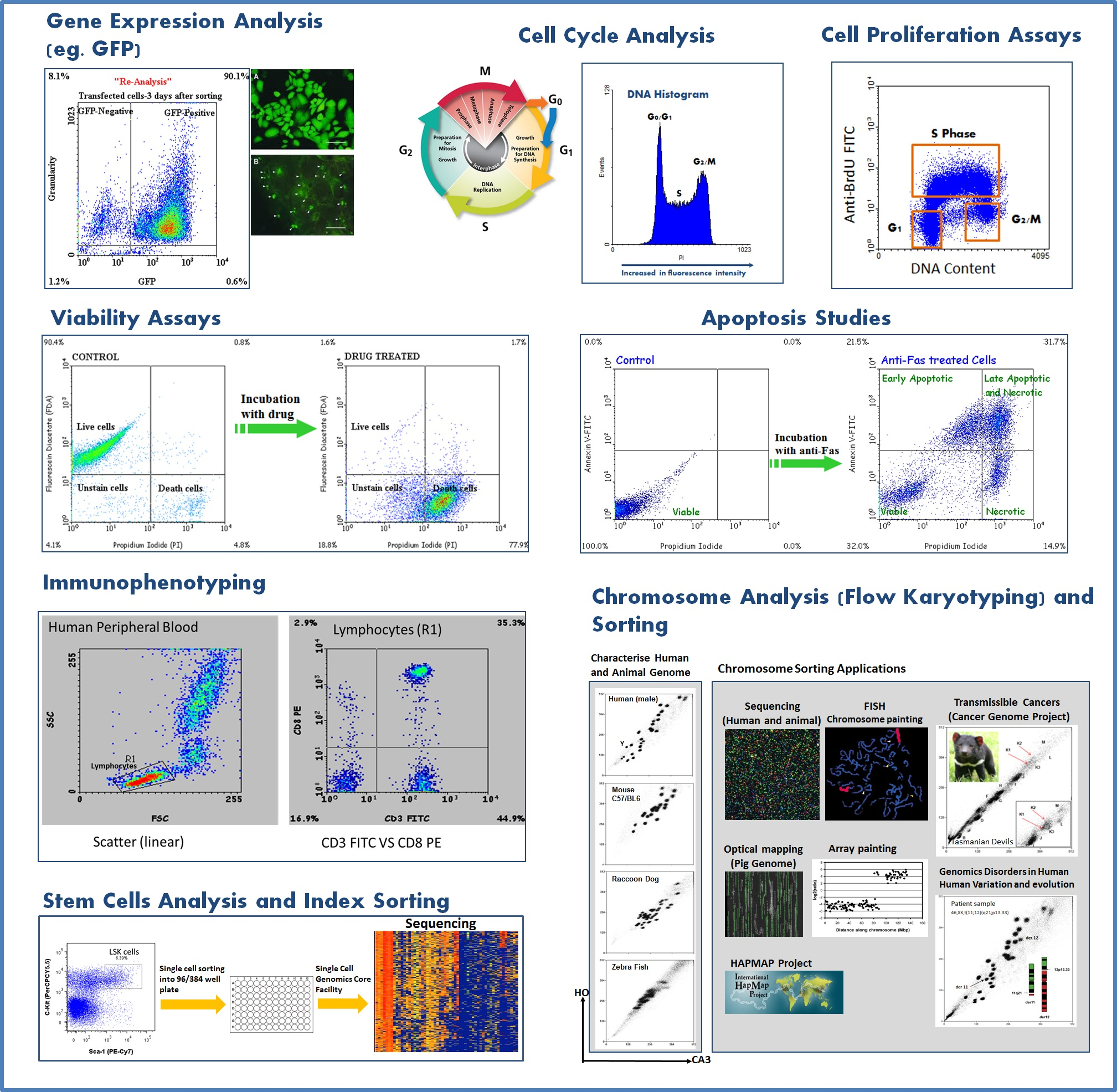 flow_cytometry_application_1.jpg