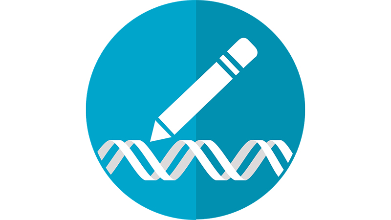 Wellcome Sanger Institute's statement on Genome Editing in Human