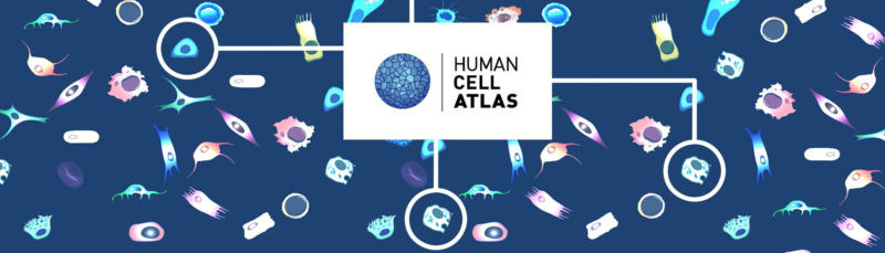 Human Cell Atlas