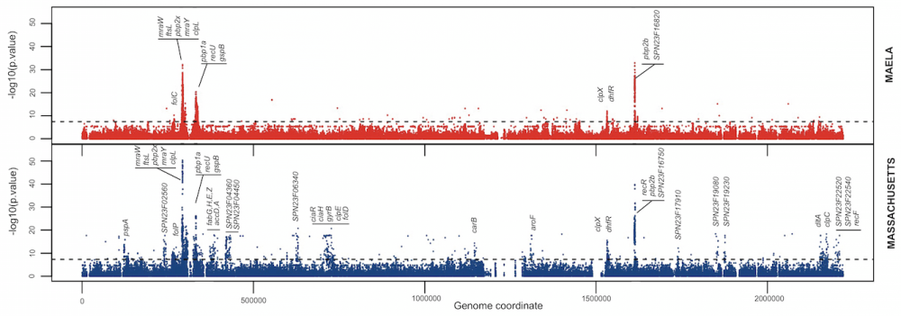 Manhattan plot for S. pneumoniae drug resistance