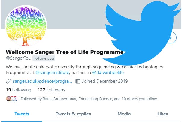 Tree of Life Programme Twitter Channel