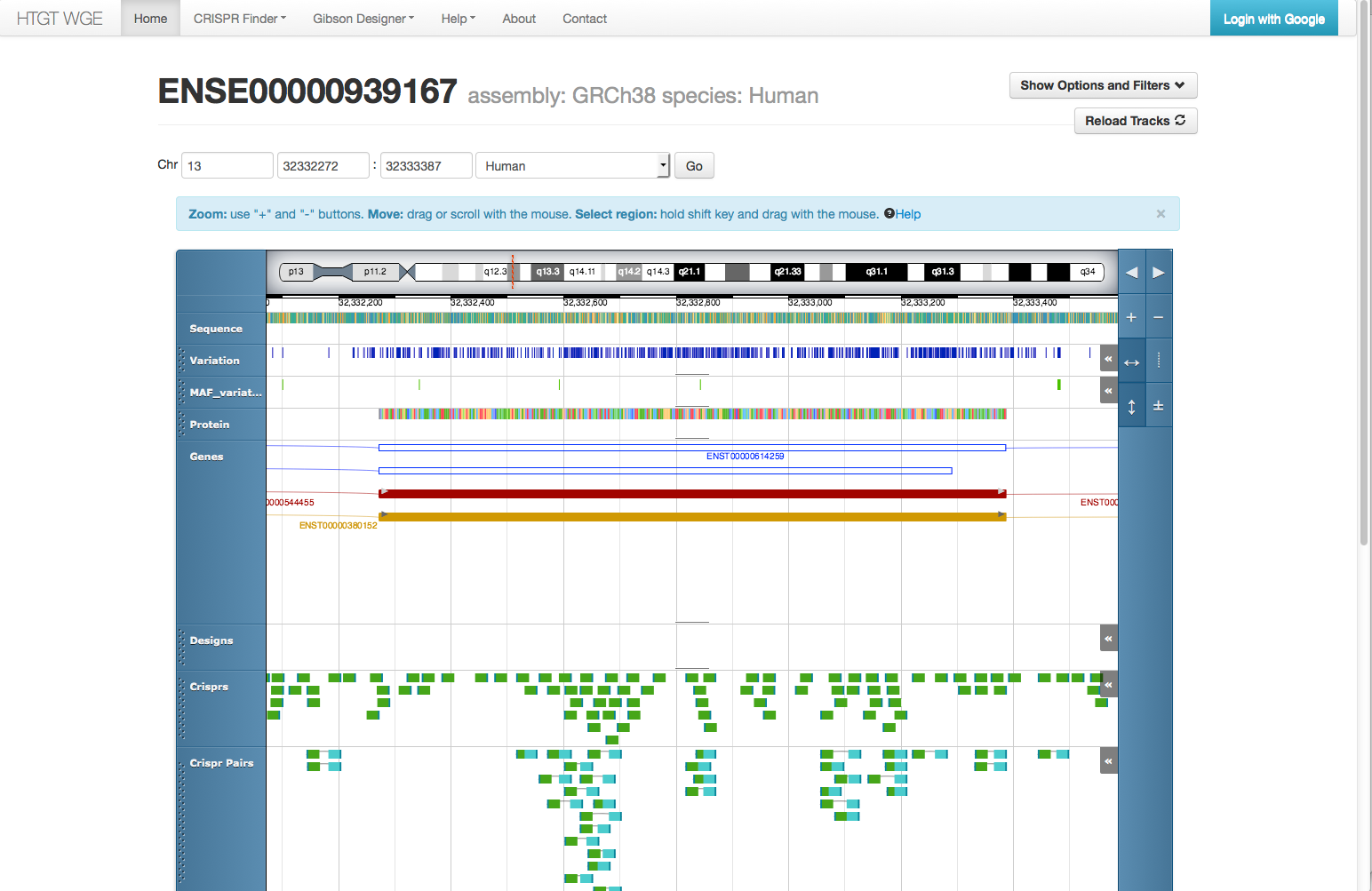 Working on selection of CRISPRs for a genome editing experiment in the WGE Genome Browser